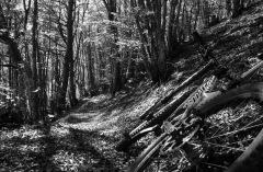 monte Cucco sentiero Italia